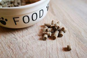 Bellfor Trockenfutter mit Insekten | kleinstadthunde.de