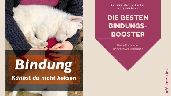 Bindung kannst du nicht keksen | Rezension | Werbung | kleinstadthunde.de