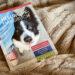Heelwork Handbuch - Eva Hampe - Hundeblog - kleinstadthunde.de